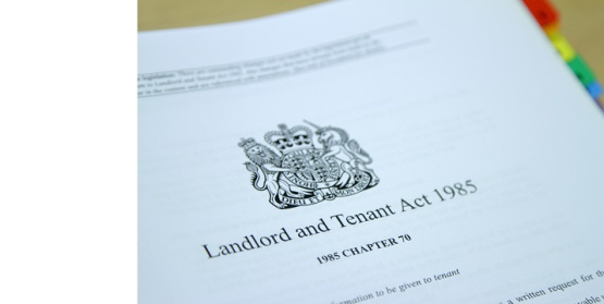 The responsibilities of both the landlord and the tenant.