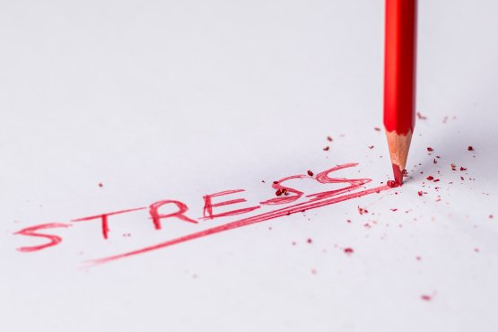 Estate agents top list of the most stressed professionals